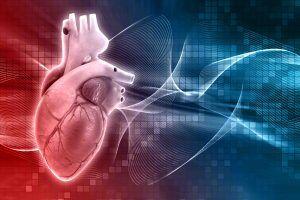 Las funciones del Corazón en Medicina China