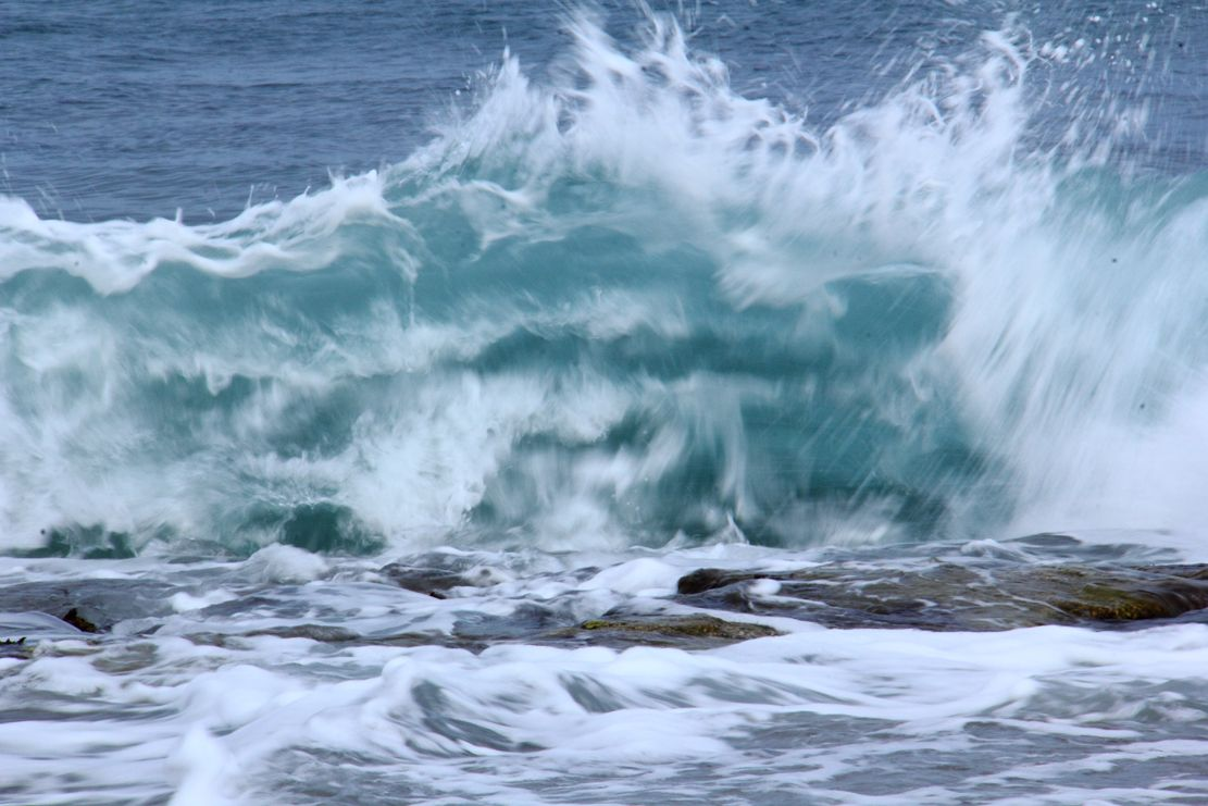 Agua, el origen de la vida. M.T.C